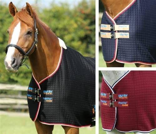 Premtex horse cooler rug